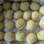 zapech.kartofel-s-grudinkoi2